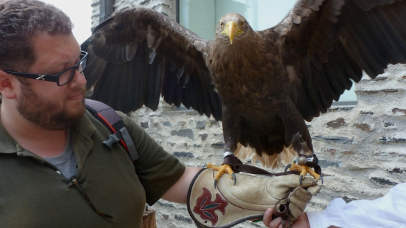 The HIGHLIGHT: Ben's run-in with an eagle!!! Vianden, Luxembourg July 26, 2014