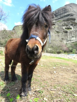 Meteora Greece - Riding in Style - Anika Mikkelson