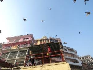 Kites Near the River Ganges - Varanasi India