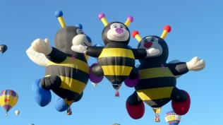 Albuquerque Balloon Fiesta 3 Breast Cancer Bees- visit www.beautifulfillment.com for more inspirations!
