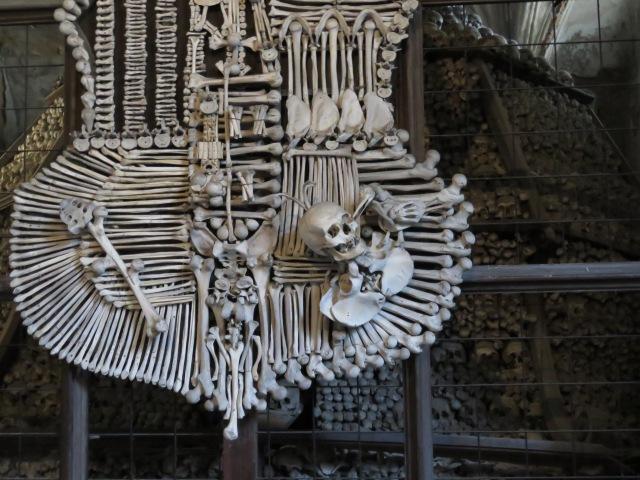 Bone Shield Kutna Hora