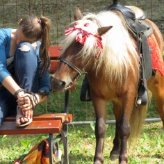 Horse Tales in Lviv, Ukraine - by Anika Mikkelson - Miss Maps