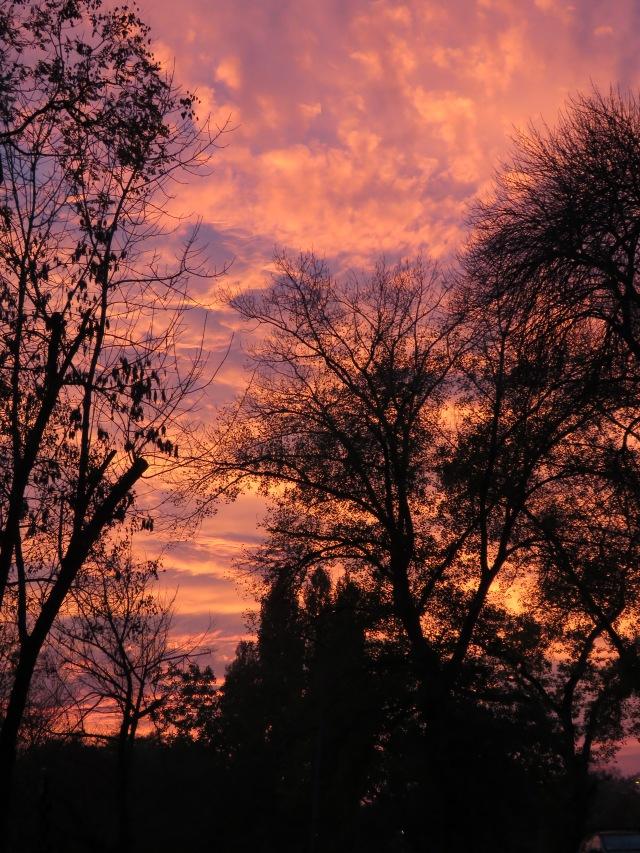 Belgrade Sunset - No Photo Edits!
