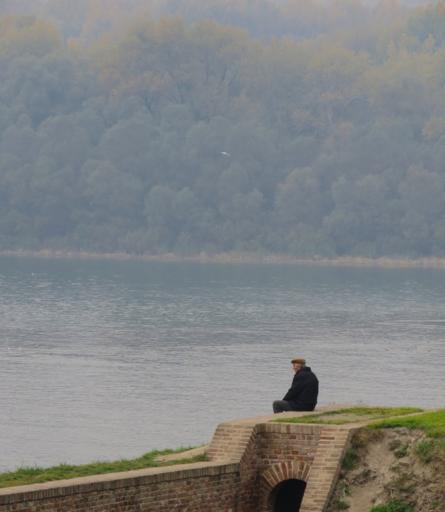 Contemplation on the Danube
