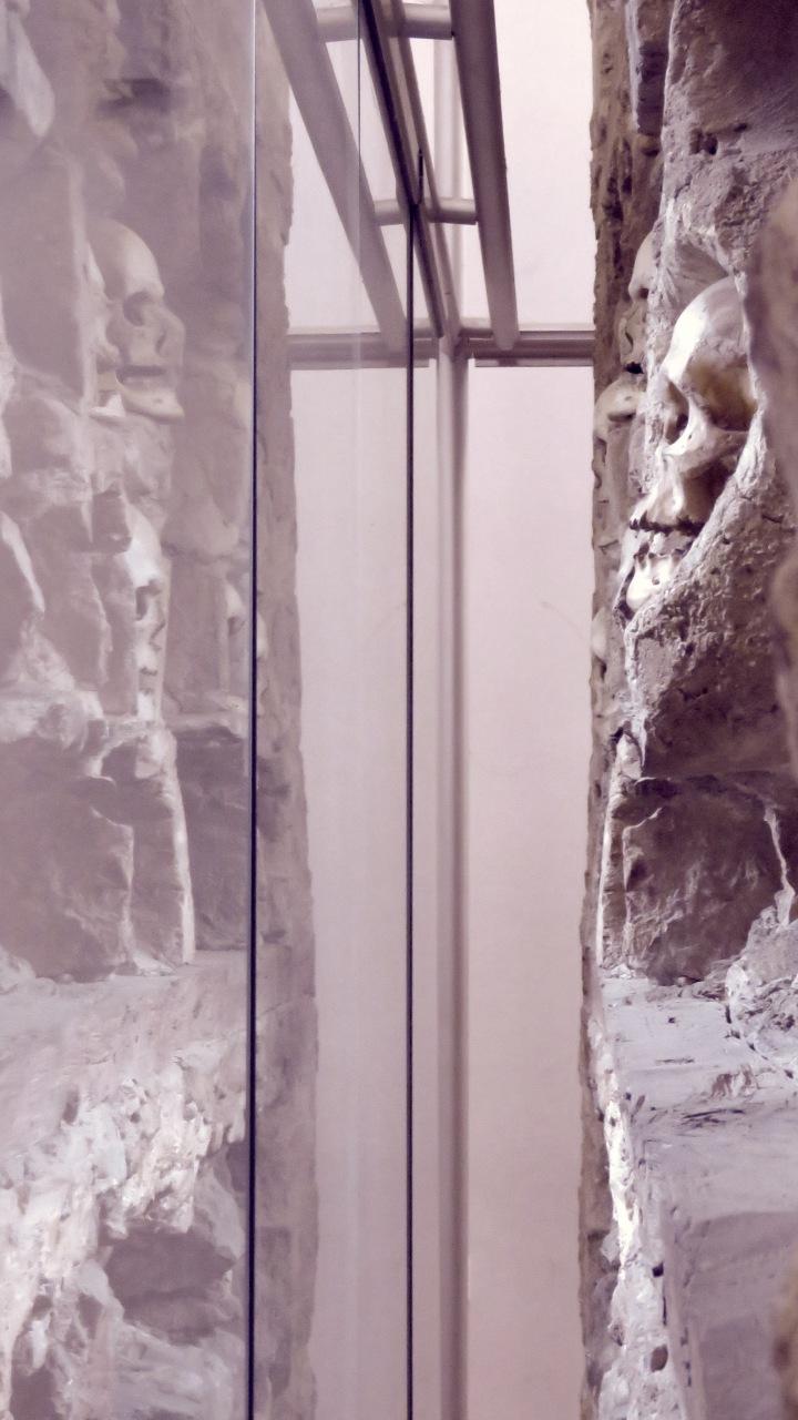 Skull Reflections - Nis, Serbia