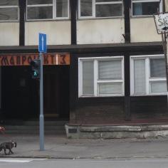 Skoljka - Belgrade, Serbia