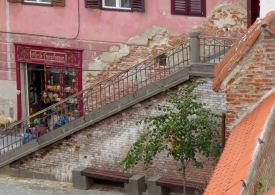 Florile Transilvaniei - Sibiu, Romania - Anika Mikkelson - Miss Maps - www.MissMaps.com