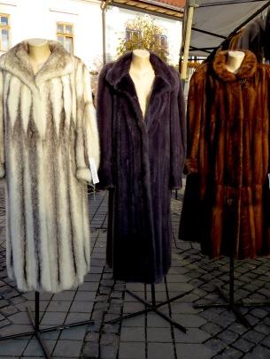 Fur Coats for Sale - Sibiu, Romania - Anika Mikkelson - Miss Maps - www.MissMaps.com
