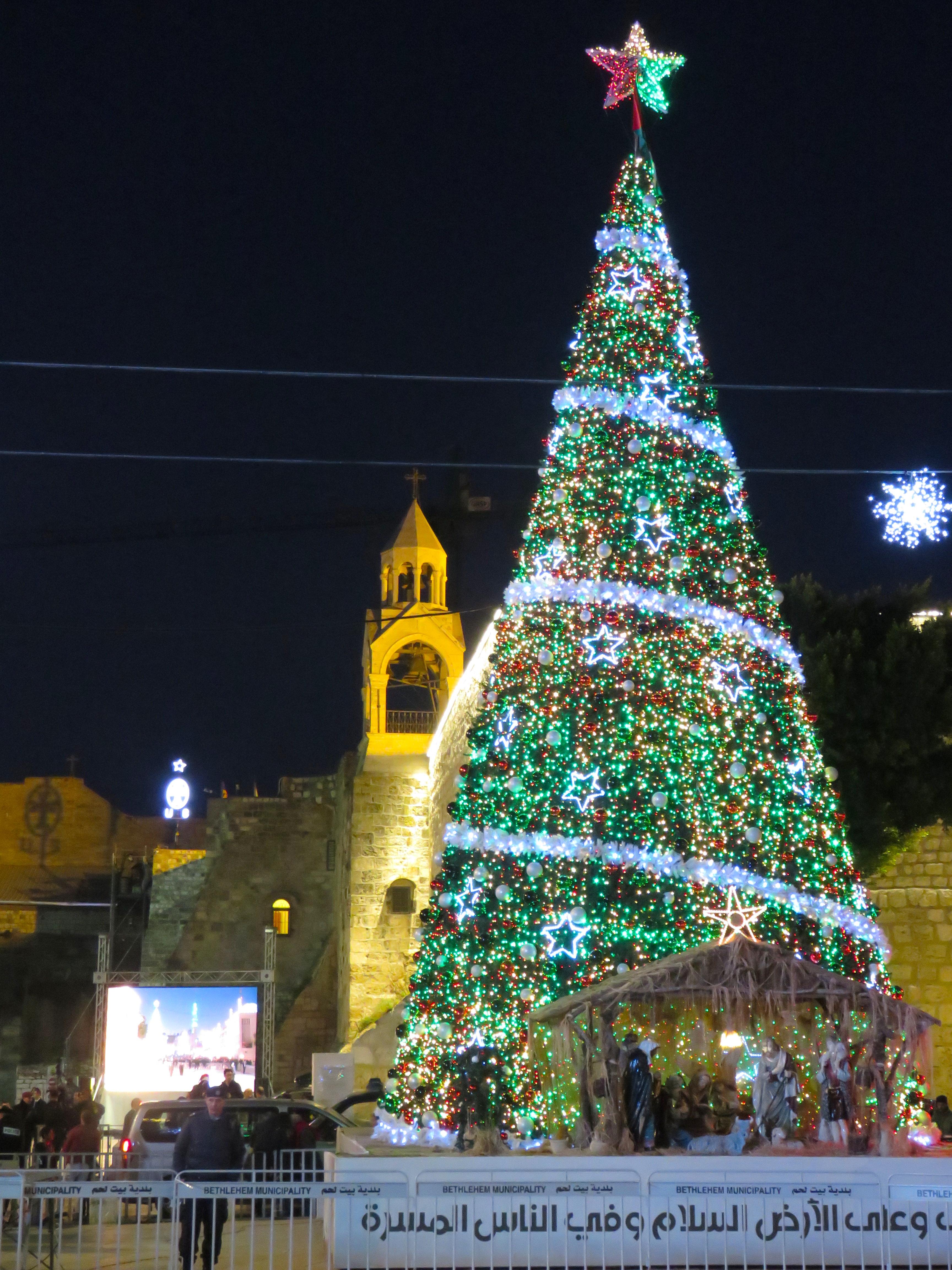 Bethlehem Christmas Tree And Church