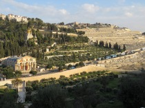 Mount of Olives in Jerusalem - by Anika Mikkelson - Miss Maps - www.MissMaps.com