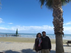 Palm Trees and Christmas Trees in Larnaca Cyprus - Anika Mikkelson - Miss Maps - www.MissMaps.com
