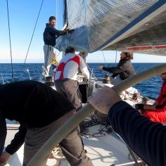 Setting up the sails - Limassol Cyprus - by Anika Mikkelson - Miss Maps - www.MissMaps.com
