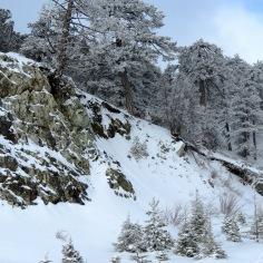 And then it snowed - by Anika Mikkelson - Miss Maps - www.MissMaps.com