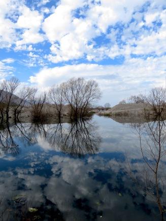 Reflections on Buna (Bojana) River - Shkoder Albania - by Anika Mikkelson - Miss Maps - www.MissMaps.com
