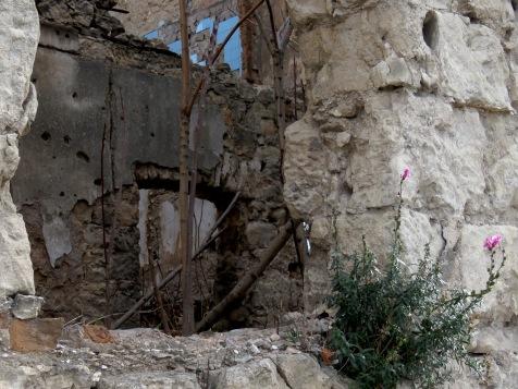 Ruins and flowers - Mostar, Bosnia and Herzegovina - by Anika Mikkelson - Miss Maps - www.MissMaps.com