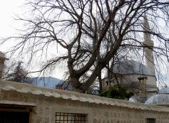 The Mosque near Saray Restaurant - Mostar, Bosnia and Herzegovina - by Anika Mikkelson - Miss Maps - www.MissMaps.com