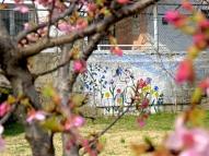 Watering Flowers - Mostar, Bosnia and Herzegovina - by Anika Mikkelson - Miss Maps - www.MissMaps.com