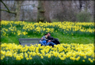 A couple relaxes amongst the daffodils in Buckingham Palace Gardens - London, England, United Kingdom - by Anika Mikkelson - Miss Maps