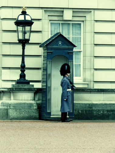 A Kensington Palace Guard Takes his first steps - London, England, United Kingdom - by Anika Mikkelson - Miss Maps