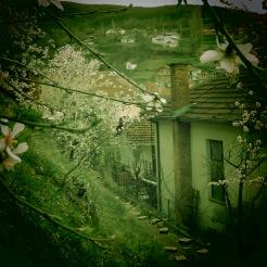 A tiny village near Ohrid Macedonia - by Anika Mikkelson - Miss Maps - www.MissMaps.com