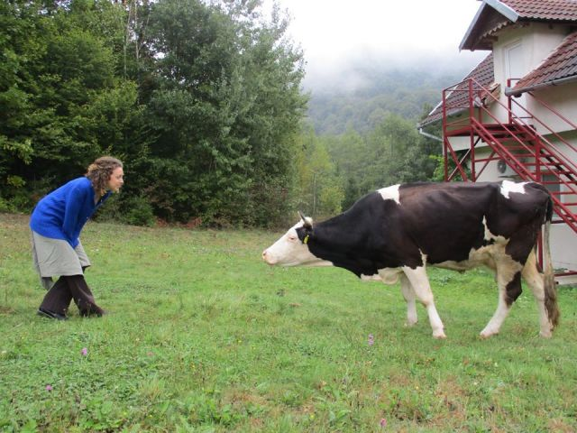 Anika vs Cow - Romanian Monastery - Miss Maps