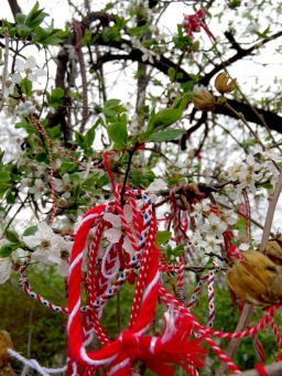 Blossoms and Bracelets - Plovdiv, Bulgaria - by Anika Mikkelson - Miss Maps