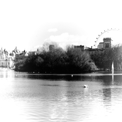London Eye, Palace, and Swans. So classic- London, England, United Kingdom - by Anika Mikkelson - Miss Maps