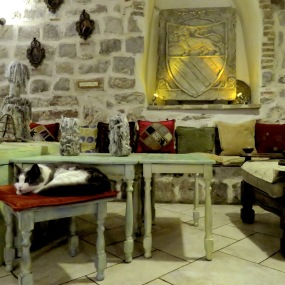 Lounge Area at Old Town Kotor Hostel - by Anika Mikkelson - Miss Maps - www.MissMaps.com