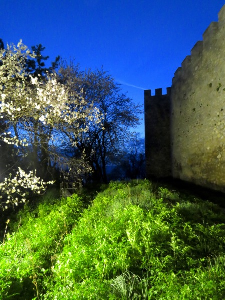 Ohrid Fortress and Cherry Blossoms at Dusk - Ohrid Macedonia - by Anika Mikkelson - Miss Maps - www.MissMaps.com