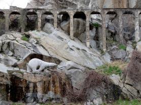 Polar Bear of Plovdiv, Bulgaria - by Anika Mikkelson - Miss Maps