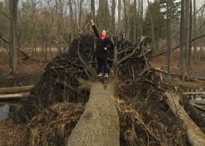 "Brianna sporting her signature ""Wander Woman"" pose after climbing onto a fallen tree - MissMaps.com Featured Female Traveler"