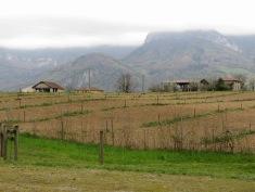 Fields of Grenoble France - by Anika Mikkelson - Miss Maps - www.MissMaps.com