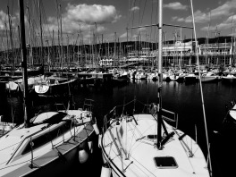 All those masts waiting - Trieste Italy - by Anika Mikkelson - Miss Maps - www.MissMaps.com