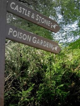 Castle Stone and Poison Garden of Blarney Castle - Ireland - by Anika Mikkelson - Miss Maps - www.MissMaps.com