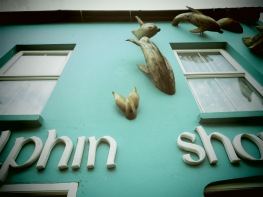 Dolphin Shop (and 'real' dolphins) - Dingle Ireland - by Anika Mikkelson - Miss Maps - www.MissMaps.com