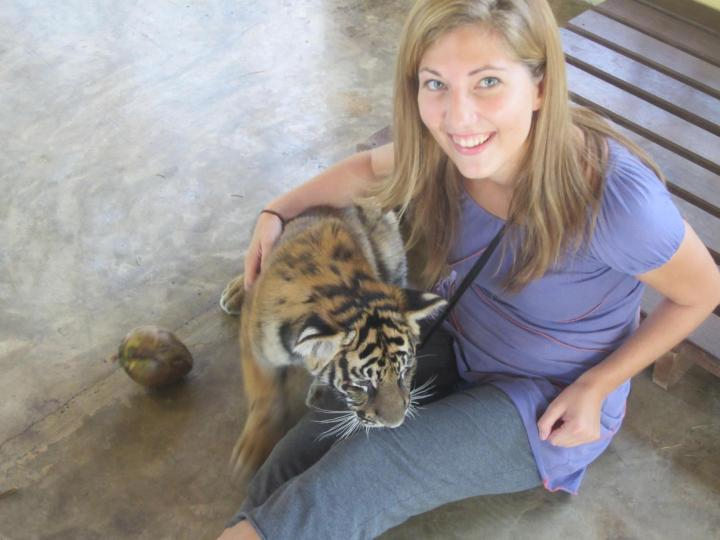 Erica Hobbs playing with baby tigers in Chiang Mai, Thailand - Featured Female Traveler on MissMaps.com