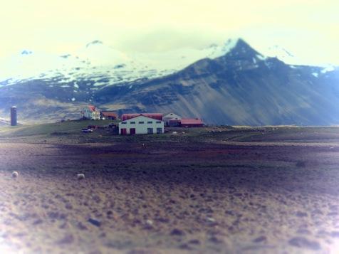 Farm Life - Iceland - by Anika Mikkelson - Miss Maps - www.MissMaps.com
