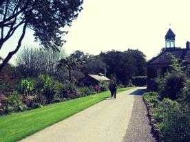 Gardens of Blarney Ireland - by Anika Mikkelson - Miss Maps - www.MissMaps.com