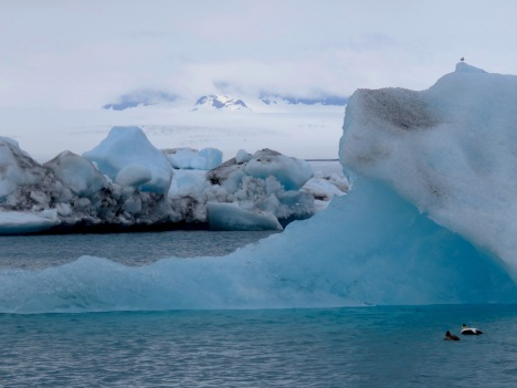 Look at the size of them things - Icebergs in Iceland - by Anika Mikkelson - Miss Maps - www.MissMaps.com