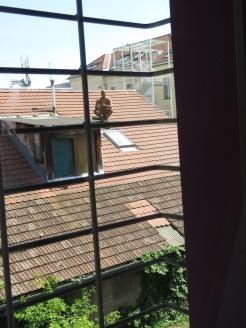 My night's watchman - the view from my cell window - Ljubljana Slovania - by Anika Mikkelson - Miss Maps - www.MissMaps.com