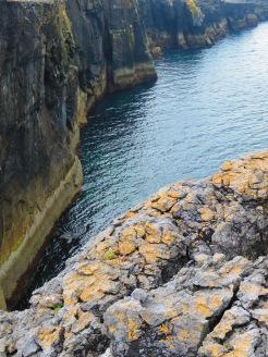 The cliffs of Burren Ireland - Shamrocker Adventure Tours - by Anika Mikkelson - Miss Maps - www.MissMaps.com