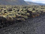 Waist high lava fields - Iceland - by Anika Mikkelson - Miss Maps - www.MissMaps.com