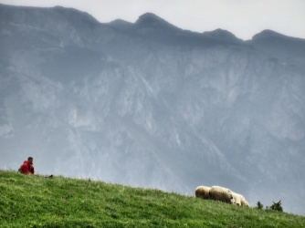 A Shepherd and His Sheep - Bosnia and Herzegovina - by Anika Mikkelson - Miss Maps - MissMaps.com