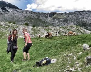 Getting that perfect goat selfie - Bosnia and Herzegovina - by Anika Mikkelson - Miss Maps www.MissMaps.com