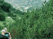 Hiking through Bosnia and Herzegovina - by Anika Mikkelson - Miss Maps - www.MissMaps.com