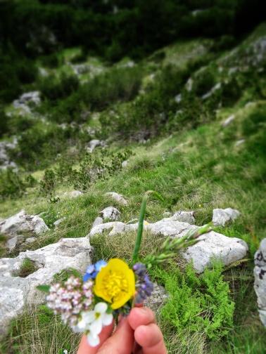 Picking Wildflowers - by Anika Mikkelson - Miss Maps - www.MissMaps.com