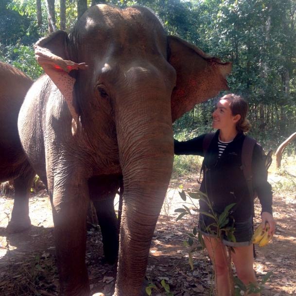 Visiting The Elephant Sanctuary in Mondulkiri Cambodia - photo by Bianca Caruana - MissMaps.com Featured Female Traveler