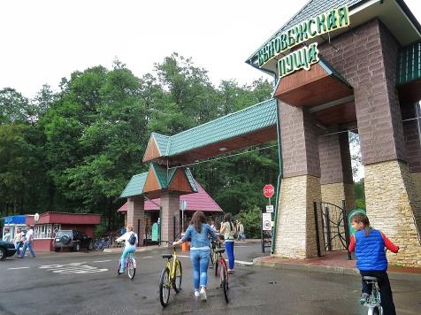 3 seconds to spot the mullet - National Park Belovezhskaya Pushcha - by Anika Mikkelson - Miss Maps - www.MissMaps.com