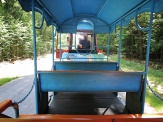 On the toy train to town - National Park Belovezhskaya Pushcha - by Anika Mikkelson - Miss Maps - www.MissMaps.com