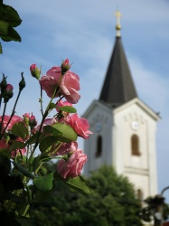 Roses and the Church - Nitra Slovakia - by Anika Mikkelson - Miss Maps - www.MissMaps.com